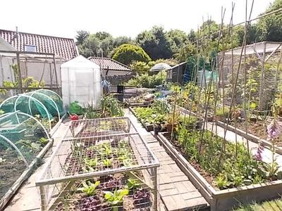 Definition: Allotment